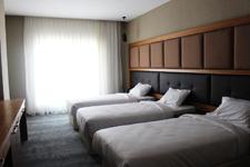 Отель Sky, трехместный номер