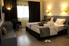 Отель Black Tulip, двухместный номер