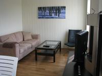 Апартаменты Istind Alpingrend, гостиная