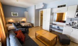 Стандартные апартаменты, гостиная 2