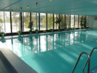Spa отель Herttua, бассейн 2