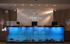 Отель Bellevue, рецепция