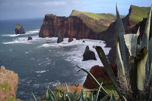 остров Мадейра в Атлантическом океане