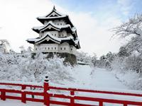 Тур на Новый год в Токио