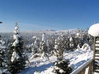 Аренда дома на Новый год на горнолыжном курорте