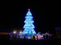Тур на Новый год в Гонконг и остров Борнео