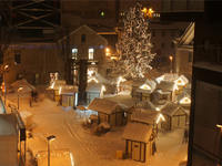Рождественский Вильнюс, Рига и Таллин