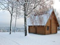 Коттеджи на Новый год и каникулы в Токсово