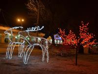 Автобусный тур по России на Рождество