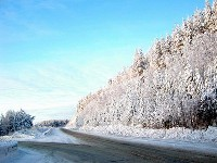 Активный отдых на Новый год в Мурманской области
