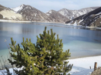 Новогодний отдых в Чеченской Республике