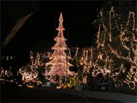 Новогодний и Рождественский отдых на Шри-Ланке
