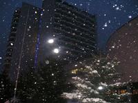 Путевки на зимние каникулы в пансионат