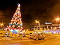 Новогодний тур в Санкт-Петербург из Москвы