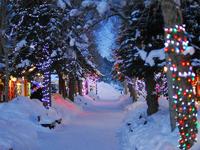 Новогодние туры к Деду Морозу и Санта Клаусу